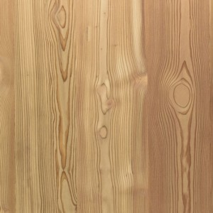 Select Larch -